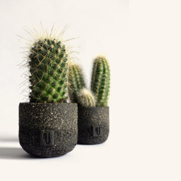 Comet Mini Planter - Violaine Toth Ceramic