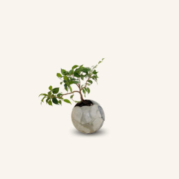 Giacobini concrete and lava-rock sphere planter grey color by Dirty Roots